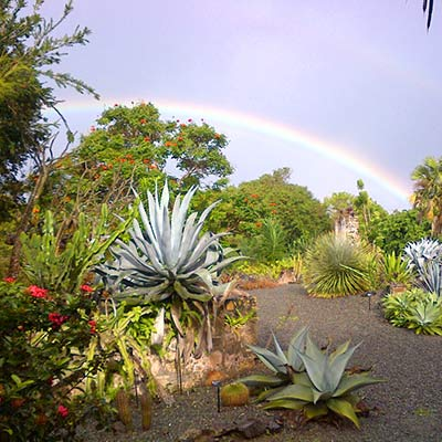 St. George's Village Botanical Gardens on St. Croix