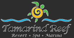 tamarind reef resort st croix scuba virgin islands caribbean