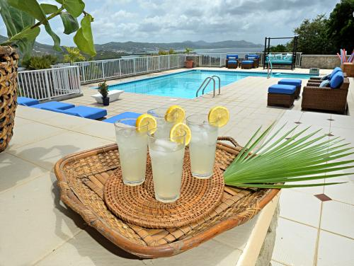 rental villa with pool on st croix virgin islands