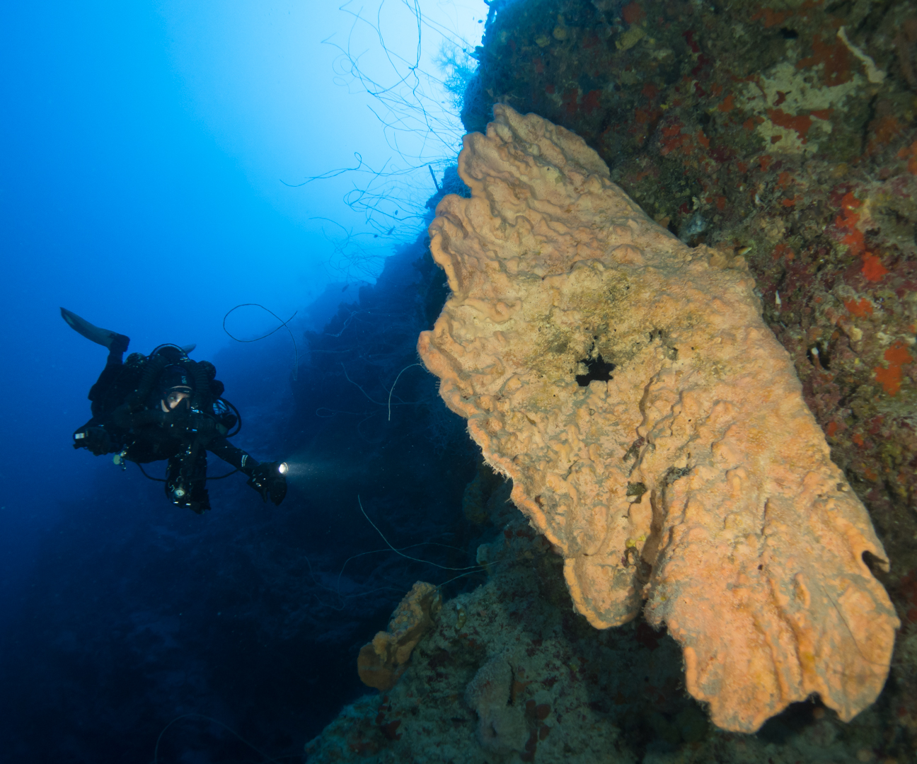 Rebreather St. Croix